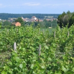 chateaumeillant03