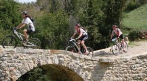 """<p>Le St-Affricain, au sud du département de l'Aveyron fait partie du Parc naturel régional des Grands Causses. Situés sur les avants Causses du Larzac, ses paysages préservés s'étendent à perte de vue. Entre grès rouge et calcaire, entre Causses, rougier et vallées, les circuits proposé ......</p><div class=""""more""""><a href=""""http://ffct.org/randonner-a-velo/vtt/bases-vtt/aveyron/pays-saint-affricain/"""" target=""""_blank"""" title=""""Pays Saint-Affricain"""" >Lire la suite</a></div>"""