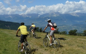"""<p>Situé à l'extrémité Sud du département de l'Isère, à la jonction de trois départements, Hautes-Alpes, Drôme et Isère, le Trièves associe de manière surprenante les paysages alpins de moyenne montagne, et la douceur du climat de la Provence toute proche. Le Trièves est un territoire de ......</p><div class=""""more""""><a href=""""https://ffct.org/randonner-a-velo/vtt/bases-vtt/isere/trieves/"""" target=""""_blank"""" title=""""Base VTT du Trièves"""" >Lire la suite</a></div>"""