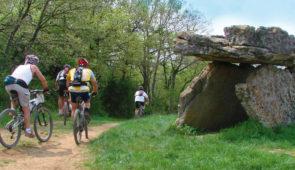 """<p>Le St-Affricain, au sud du département de l'Aveyron fait partie du Parc naturel régional des Grands Causses. Situés sur les avants Causses du Larzac, ses paysages préservés s'étendent à perte de vue. Entre grès rouge et calcaire, entre Causses, rougier et vallées, les circuits proposé ......</p><div class=""""more""""><a href=""""https://ffvelo.fr/randonner-a-velo/vtt/bases-vtt/aveyron/pays-saint-affricain/"""" target=""""_blank"""" title=""""Pays Saint-Affricain"""" >Lire la suite</a></div>"""