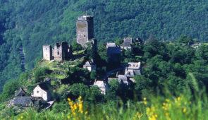 """<p>Le Carladez est un endroit secret au pied des volcans du Cantal, aux sites uniques et souvent sauvages comme la presqu'ile de Laussac, le village de Valon, les gorges de la Truyère. Ce territoire a appartenu durant 148 ans à la principauté de Monaco. Le maitre mot de cette régio ......</p><div class=""""more""""><a href=""""https://ffvelo.fr/randonner-a-velo/vtt/bases-vtt/aveyron/base-vtt-nature-du-carladez/"""" target=""""_blank"""" title=""""Base VTT nature du Carladez"""" >Lire la suite</a></div>"""