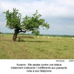 gazette-14P-55-2013-06-n1