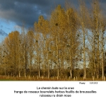 gazette-14P-56-2013-11-n3