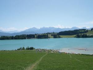 """<p>La Bavière avec ses châteaux, ses lacs, ses paysages hors du commun, sa douceur de vivre, sa gastronomie typique, son accueil qui fait chaud au cœur, sa bière etc.. Visites de châteaux  ......</p><div class=""""more""""><a href=""""http://ffct.org/randonner-a-velo/ou-quand-pratiquer/sejours-et-voyages/allemagne/"""" target=""""_blank"""" title=""""Allemagne"""" >Lire la suite</a></div>"""