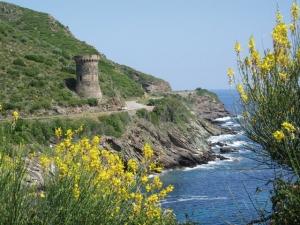 """<p>Terre de contrastes, véritable """" montagne dans la mer """" la Corse que les grecs avaient baptisée Kallisté, la plus belle. Vous pourrez apprécier les charmes de l'île de Beauté avec ce sé ......</p><div class=""""more""""><a href=""""http://ffct.org/randonner-a-velo/ou-quand-pratiquer/sejours-et-voyages/corse-7/"""" target=""""_blank"""" title=""""Corse"""" >Lire la suite</a></div>"""