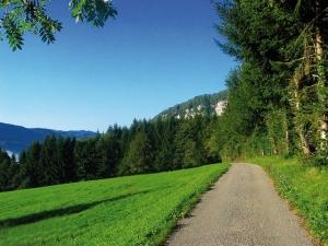 """<p>Voiture d'assistance avec encadrement de cyclotouristes pour les circuits de 75, 100 et 125 km. Les tandems et vélo à assistance électrique sont acceptés. Le jour éventuel de repos est  ......</p><div class=""""more""""><a href=""""http://ffct.org/randonner-a-velo/ou-quand-pratiquer/sejours-et-voyages/30e-semaine-franco-suisse/"""" target=""""_blank"""" title=""""30e semaine Franco-Suisse"""" >Lire la suite</a></div>"""