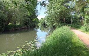 """<p>À une heure de Lyon, la base VTT de Montrevel-en-Bresse est située au cœur de la Bresse et d'un espace entièrement dédié aux loisirs: la Plaine tonique. Elle réunit sur un même site un camping quatre étoiles, un centre aquatique, un restaurant et un lac dédié aux loisirs aquatiques e ......</p><div class=""""more""""><a href=""""http://ffct.org/randonner-a-velo/vtt/bases-vtt/ain/base-vtt-de-montrevel-en-bresse/"""" target=""""_blank"""" title=""""Base VTT de Montrevel-en-Bresse"""" >Lire la suite</a></div>"""