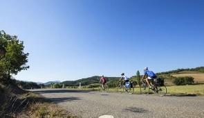 """<p>Vous randonnerez sur les routes du Val-de-Loire et découvrirez la Loire et ses multiples paysages fluviaux, ses coteaux où prospère l'activité viticole et ses prestigieuses appellations ......</p><div class=""""more""""><a href=""""http://ffct.org/randonner-a-velo/ou-quand-pratiquer/sejours-et-voyages/parc-naturel-regional-loire-anjou-touraine/"""" target=""""_blank"""" title=""""Parc naturel régional Loire-Anjou-Touraine"""" >Lire la suite</a></div>"""