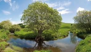 """<p>Découvrez les circuits dans la vallée de la Dore, rivière qui connaît depuis quelques années le retour des saumons ; dans les vallées sauvages des torrents de la Credogne et de la Faye  ......</p><div class=""""more""""><a href=""""http://ffct.org/randonner-a-velo/ou-quand-pratiquer/sejours-et-voyages/au-fil-de-leau-a-velo/"""" target=""""_blank"""" title=""""Au fil de l'eau à vélo"""" >Lire la suite</a></div>"""