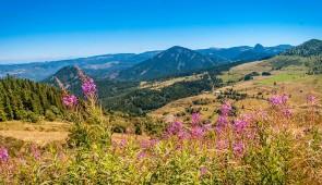 """<p> En plein de cœur de l'Auvergne entre le Centre nature """" Les 4 vents """" et les verts plateaux, venez découvrir, par des petites routes tranquilles, le Parc régional du Livradois-Forez, l ......</p><div class=""""more""""><a href=""""http://ffct.org/randonner-a-velo/ou-quand-pratiquer/sejours-et-voyages/lauvergne-a-portee-de-tous/"""" target=""""_blank"""" title=""""L'Auvergne à portée de tous"""" >Lire la suite</a></div>"""
