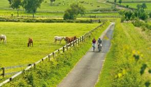 """<p>Un séjour tranquille composé de promenades accessibles à tous. La Wallonie, a une variété de paysages étonnante avec, entre autres, un plateau de 4 000 hectares de zones de tourbières e ......</p><div class=""""more""""><a href=""""http://ffct.org/randonner-a-velo/ou-quand-pratiquer/sejours-et-voyages/belgique-wallonie/"""" target=""""_blank"""" title=""""Belgique – Wallonie"""" >Lire la suite</a></div>"""