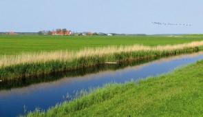 """<p>Séjour de tout niveau dans un esprit de balade. Venez découvrir, d'une manière originale, une partie de ce pays grâce à des circuits variés, typiquement hollandais et souvent à l'écart  ......</p><div class=""""more""""><a href=""""http://ffct.org/randonner-a-velo/ou-quand-pratiquer/sejours-et-voyages/pays-bas/"""" target=""""_blank"""" title=""""Pays-bas"""" >Lire la suite</a></div>"""