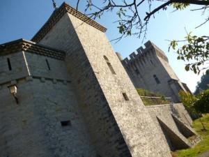 Tours et mur d'enceinte du château.