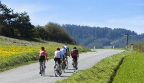 """<p>Grâce au vélo électrique, l'Auvergne est devenue accessible au plus grand nombre malgré ses dénivelés. Ce séjour vous permettra de sillonner les nombreuses routes du Livradois-Forez, ta ......</p><div class=""""more""""><a href=""""https://ffct.org/randonner-a-velo/ou-quand-pratiquer/sejours-et-voyages/decouverte-du-livradois-forez/"""" target=""""_blank"""" title=""""Découverte du Livradois-Forez"""" >Lire la suite</a></div>"""