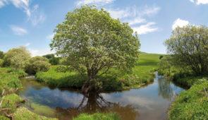 """<p>Un très beau séjour sur des circuits le plus souvent ombragés le long de vallons aux ruisseaux magnifiques. C'est pour ses paysages qu'on aime l'Auvergne. Parcourez les circuits en bord ......</p><div class=""""more""""><a href=""""https://ffct.org/randonner-a-velo/ou-quand-pratiquer/sejours-et-voyages/au-fil-de-leau-2/"""" target=""""_blank"""" title=""""Au fil de l'eau"""" >Lire la suite</a></div>"""
