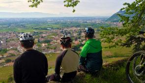 """<p>La région Rhône Crussol, véritable destination vignoble et pleine nature. Territoire de trois appellations d'origine contrôlée prestigieuses, Cornas, Saint-Péray et Saint-Joseph, mais aussi point de départ de vos excursions ou plus de 350 kilomètres de réseau de sentiers entretenus et ......</p><div class=""""more""""><a href=""""https://ffvelo.fr/randonner-a-velo/vtt/bases-vtt/ardeche/base-vtt-rhone-crussol/"""" target=""""_blank"""" title=""""Base VTT Rhône-Crussol"""" >Lire la suite</a></div>"""