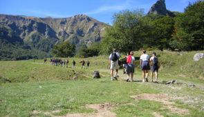 """<p>Situé au coeur du parc naturel régional Livradois-Forez, le Centre cyclotouriste des 4 Vents est un point de départ idéal pour partir à la rencontre d'une nature très animée : de nombre ......</p><div class=""""more""""><a href=""""https://ffct.org/randonner-a-velo/ou-quand-pratiquer/sejours-et-voyages/rando-pedestre-en-auvergne-2/"""" target=""""_blank"""" title=""""Rando pédestre en Auvergne"""" >Lire la suite</a></div>"""