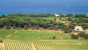 """<p>Au coeur du massif des Maures, proche du littoral sauvegardé, Collobrières a su conserver l'authenticité d'un village provençal. Traversé par une petite rivière, le Réal Collobrier, le  ......</p><div class=""""more""""><a href=""""https://ffct.org/randonner-a-velo/ou-quand-pratiquer/sejours-et-voyages/la-chataigneraie-des-maures/"""" target=""""_blank"""" title=""""La Châtaigneraie des Maures"""" >Lire la suite</a></div>"""
