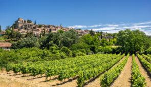 """<p>Le Luberon, montagne pas très élevée vous offrira des paysages sans nul autre pareil avec ses monuments historiques, ses villages perchés dont certains sont classés parmi les plus beaux ......</p><div class=""""more""""><a href=""""https://ffct.org/randonner-a-velo/ou-quand-pratiquer/sejours-et-voyages/decouverte-du-luberon/"""" target=""""_blank"""" title=""""Découverte du Luberon"""" >Lire la suite</a></div>"""