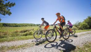 """<p>Venez randonner dans le Parc naturel régional Livradois-Forez sur des parcours de 25 à 39 kilomètres à la demi-journée ainsi que deux parcours de 50 à 65 kilomètres à la journée. Au cou ......</p><div class=""""more""""><a href=""""https://ffvelo.fr/randonner-a-velo/ou-quand-pratiquer/sejours-et-voyages/100-vtt/"""" target=""""_blank"""" title=""""100% VTT"""" >Lire la suite</a></div>"""