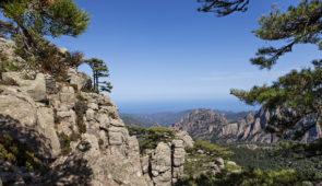 """<p>Terre de contrastes, véritable montagne dans la mer, la Corse la plus belle, vous séduira par la splendeur de ses paysages sauvages et variés. Vous pourrez apprécier les charmes de l'îl ......</p><div class=""""more""""><a href=""""https://ffct.org/randonner-a-velo/ou-quand-pratiquer/sejours-et-voyages/la-plus-belle-des-iles-2/"""" target=""""_blank"""" title=""""La plus belle des îles !"""" >Lire la suite</a></div>"""