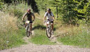 """<p>La région Le massif calcaire des Monts de Gy, frontière naturelle entre la vallée de l'Ognon et la vallée de la Saône constitue un lieu idéal où les chemins forestiers, les sentiers sinueux, les chemins empierrés évoluent entre mont et vaux. Tranquillité, grands espaces, nature préser ......</p><div class=""""more""""><a href=""""https://ffvelo.fr/randonner-a-velo/vtt/bases-vtt/haute-saone/base-vtt-des-monts-de-gy/"""" target=""""_blank"""" title=""""Base VTT des Monts de Gy"""" >Lire la suite</a></div>"""