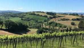 """<p>Cette région présente toutes les facettes pour un séjour plein de plaisir et d'émotions : des routes et des paysages fabuleux, un accueil très chaleureux et une cuisine raffinée, la mei ......</p><div class=""""more""""><a href=""""https://ffct.org/randonner-a-velo/ou-quand-pratiquer/sejours-et-voyages/italie-2/"""" target=""""_blank"""" title=""""La Romagne, Terre de Cyclisme et de Gastronomie"""" >Lire la suite</a></div>"""