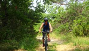"""<p>Entre champs de lavandes, vignes et truffières, le Tricastin se situe en plein cœur de la Drôme provençale. Ce territoire composé de 14 communes, dont Saint-Paul-Trois-Châteaux, offre de nombreuses opportunités de balades en pleine nature. Les amateurs de vélo, trouveront le terrain p ......</p><div class=""""more""""><a href=""""https://ffct.org/randonner-a-velo/vtt/bases-vtt/drome/base-vtt-de-randonnee-tricastin/"""" target=""""_blank"""" title=""""Base VTT de randonnée du Tricastin"""" >Lire la suite</a></div>"""