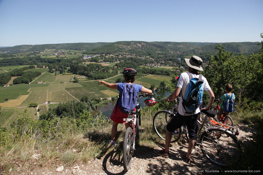 Point de vue sur le vignoble © Lot Tourisme - P. Foresti