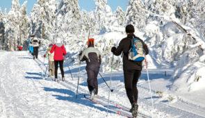 """<p>La recette de ce séjour traditionnel est désormais bien connue : un peu de neige pour pratiquer raquette ou ski de fond, des randonnées pédestres, un soupçon de culture avec la découver ......</p><div class=""""more""""><a href=""""https://ffvelo.fr/randonner-a-velo/ou-quand-pratiquer/sejours-et-voyages/nouvel-an-aux-4-vents/"""" target=""""_blank"""" title=""""Nouvel an aux 4 Vents"""" >Lire la suite</a></div>"""
