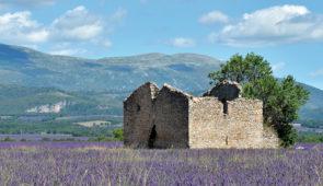 """<p>Culture, patrimoine historique et préhistorique, nature sauvage et singulière, mais aussi vignobles et champs de lavande, bon vin et bonne chère… une explosion de couleurs chaudes et oc ......</p><div class=""""more""""><a href=""""https://ffvelo.fr/randonner-a-velo/ou-quand-pratiquer/sejours-et-voyages/le-luberon-un-avant-gout-dete-7/"""" target=""""_blank"""" title=""""Le Luberon, un avant-goût d'été"""" >Lire la suite</a></div>"""