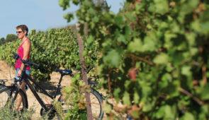 """<p>Un séjour à déguster. Un séjour à apprécier côté château, côté vignes et côté caves. Le vélo vous conduira dans un univers de tradition et de qualité. Ici il est à la route ce que le ve ......</p><div class=""""more""""><a href=""""https://ffvelo.fr/randonner-a-velo/ou-quand-pratiquer/sejours-et-voyages/sauternais-pays-de-grave/"""" target=""""_blank"""" title=""""Sauternais Pays de Grave"""" >Lire la suite</a></div>"""