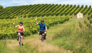 """<p>Spécial camping-car. Vous traverserez les vignes plantées dans les contreforts du parc de la montagne de Reims, berceau du vignoble de la vallée de la Marne, en passant par Épernay, le  ......</p><div class=""""more""""><a href=""""https://ffvelo.fr/randonner-a-velo/ou-quand-pratiquer/sejours-et-voyages/decouverte-du-vignoble-champenois/"""" target=""""_blank"""" title=""""Découverte du vignoble Champenois"""" >Lire la suite</a></div>"""