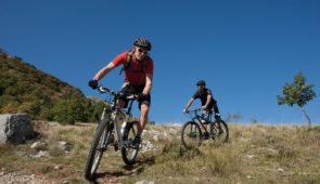"""<p>Vous appréciez les vacances sportives ? Alors nous vous proposons du VTT tous les matins ! Chaque jour, une sortie sur une thématique différente pour découvrir les nombreux atouts du pa ......</p><div class=""""more""""><a href=""""https://ffvelo.fr/randonner-a-velo/ou-quand-pratiquer/sejours-et-voyages/vtt-auvergne-sport-detente-2/"""" target=""""_blank"""" title=""""VTT Auvergne sport & détente"""" >Lire la suite</a></div>"""