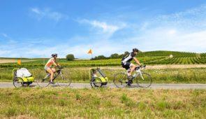 """<p>   POINTS FORTS ♥ ✓ Des parcours adaptés à tous les niveaux. ✓ Des vacances authentiques et simples.  ✓ Richesses culturelles et naturelles.    Pourquoi ne pas partir en Alsace  ......</p><div class=""""more""""><a href=""""https://ffvelo.fr/randonner-a-velo/ou-quand-pratiquer/sejours-et-voyages/evadez-vous-en-famille/"""" target=""""_blank"""" title=""""Évadez-vous en famille"""" >Lire la suite</a></div>"""