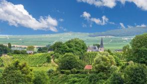 """<p>   POINTS FORTS ♥ ✓ Les vignobles et deux plus beaux villages de France. ✓ Des petites routes paisibles et peu fréquentées. ✓ Une richesse culturelle et gastronomique.    Un cond ......</p><div class=""""more""""><a href=""""https://ffvelo.fr/randonner-a-velo/ou-quand-pratiquer/sejours-et-voyages/les-perles-du-vignoble-dalsace-2/"""" target=""""_blank"""" title=""""Les perles du vignoble d'Alsace"""" >Lire la suite</a></div>"""