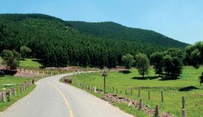 """<p>À vélo de Bayonne, vous emprunterez le Camino Francès pour franchir les Pyrénées par le col de Roncevaux. De la Navarre à la Galice, vous découvrirez les villes de Pampelune, Burgos, Lé ......</p><div class=""""more""""><a href=""""https://ffvelo.fr/randonner-a-velo/ou-quand-pratiquer/sejours-et-voyages/le-camino-frances/"""" target=""""_blank"""" title=""""Le Camino Francès"""" >Lire la suite</a></div>"""
