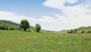 """<p>Le Livradois-Forez offre une grande variété de paysages entre plaines et collines, souvent boisés avec de nombreuses vues panoramiques sur les volcans d'Auvergne, le Sancy, les monts du ......</p><div class=""""more""""><a href=""""https://ffvelo.fr/randonner-a-velo/ou-quand-pratiquer/sejours-et-voyages/decouverte-du-livradois-forez-3/"""" target=""""_blank"""" title=""""(Nouvelles dates) Découverte du Livradois-Forez"""" >Lire la suite</a></div>"""