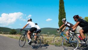 """<p>Venez rouler en toute sécurité, sur des pistes cyclables bien entretenues, de la mer à la montagne. Pour les moins sportifs, le Babaou sera votre priorité, pour les autres direction le  ......</p><div class=""""more""""><a href=""""https://ffvelo.fr/randonner-a-velo/ou-quand-pratiquer/sejours-et-voyages/retour-sur-la-cote-varoise/"""" target=""""_blank"""" title=""""Retour sur la côte varoise"""" >Lire la suite</a></div>"""