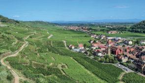 """<p>Découvrez ces petits villages fleuris nichés dans les vignes et forêts : Bergheim, Ribeauvillé, Soultzmatt… et Colmar au riche patrimoine architectural, ses canaux et ses maisons du Moy ......</p><div class=""""more""""><a href=""""https://ffvelo.fr/randonner-a-velo/ou-quand-pratiquer/sejours-et-voyages/la-route-des-vins-et-les-cols-dalsace/"""" target=""""_blank"""" title=""""La route des vins et les cols d'Alsace"""" >Lire la suite</a></div>"""