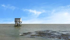 """<p>Un séjour iodé en toute liberté, pour refaire le plein d'énergie avant l'hiver. Vous serez hébergés à 400 mètres de la plage, dans la baie de La Baule. Partez à la dévouverte de la Côte ......</p><div class=""""more""""><a href=""""https://ffvelo.fr/randonner-a-velo/ou-quand-pratiquer/sejours-et-voyages/velo-et-thalasso-5/"""" target=""""_blank"""" title=""""Vélo et Thalasso"""" >Lire la suite</a></div>"""