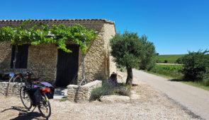"""<p>Laissez-vous guider par ce séjour épicurien aux saveurs provençales. Tous les jours nous vous proposerons une visite dans un domaine, une propriété, chez un vigneron, tous sélectionnés  ......</p><div class=""""more""""><a href=""""https://ffvelo.fr/randonner-a-velo/ou-quand-pratiquer/sejours-et-voyages/flaneries-epicuriennes-dans-les-vignobles/"""" target=""""_blank"""" title=""""Flâneries épicuriennes dans les vignobles"""" >Lire la suite</a></div>"""